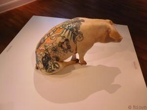 Donata de Wim Delvoye (2005), cochon tatoué et empaillé
