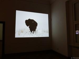 La performance filmée Ursu / Bear d'Anca Munteanu Rimnic (2013)