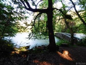 Etang et pont dans le jardin du Château d'Agathenburg