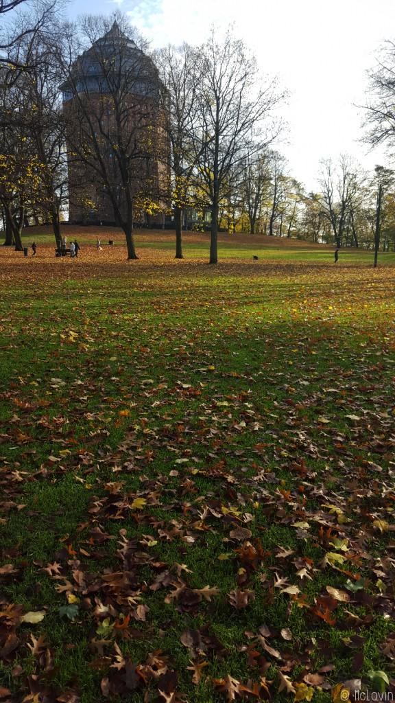 Les feuilles d'automne au parc de Schanze à Hambourg en Allemagne
