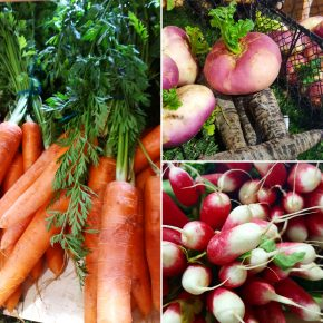 Photo Instagram de légumes aux Halles de Dinan pour l'Instameet Dinan Léhon 2016