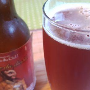 Verre et bouteille de bière IPA Corne du Diable de la brasserie canadienne et québécoise Dieu du Ciel !