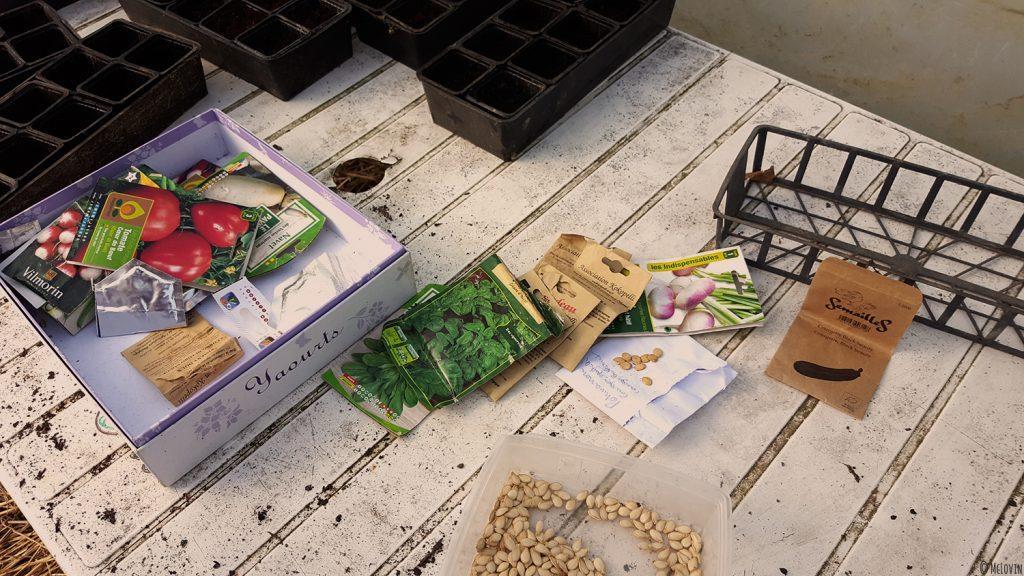 Les diférentes graines à semer, à planter dans les gobelets plastiques de la serre.