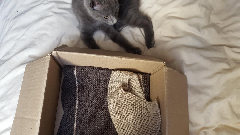 La couverture tricotée en point mousse beige et marron dans son petit carton à côté de mon chat gris chartreux.