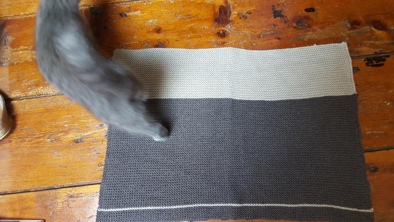 Mon chat gris chartreux avec sa couverture tricotée en point mousse beige et marron étalée dans toute sa longueur.